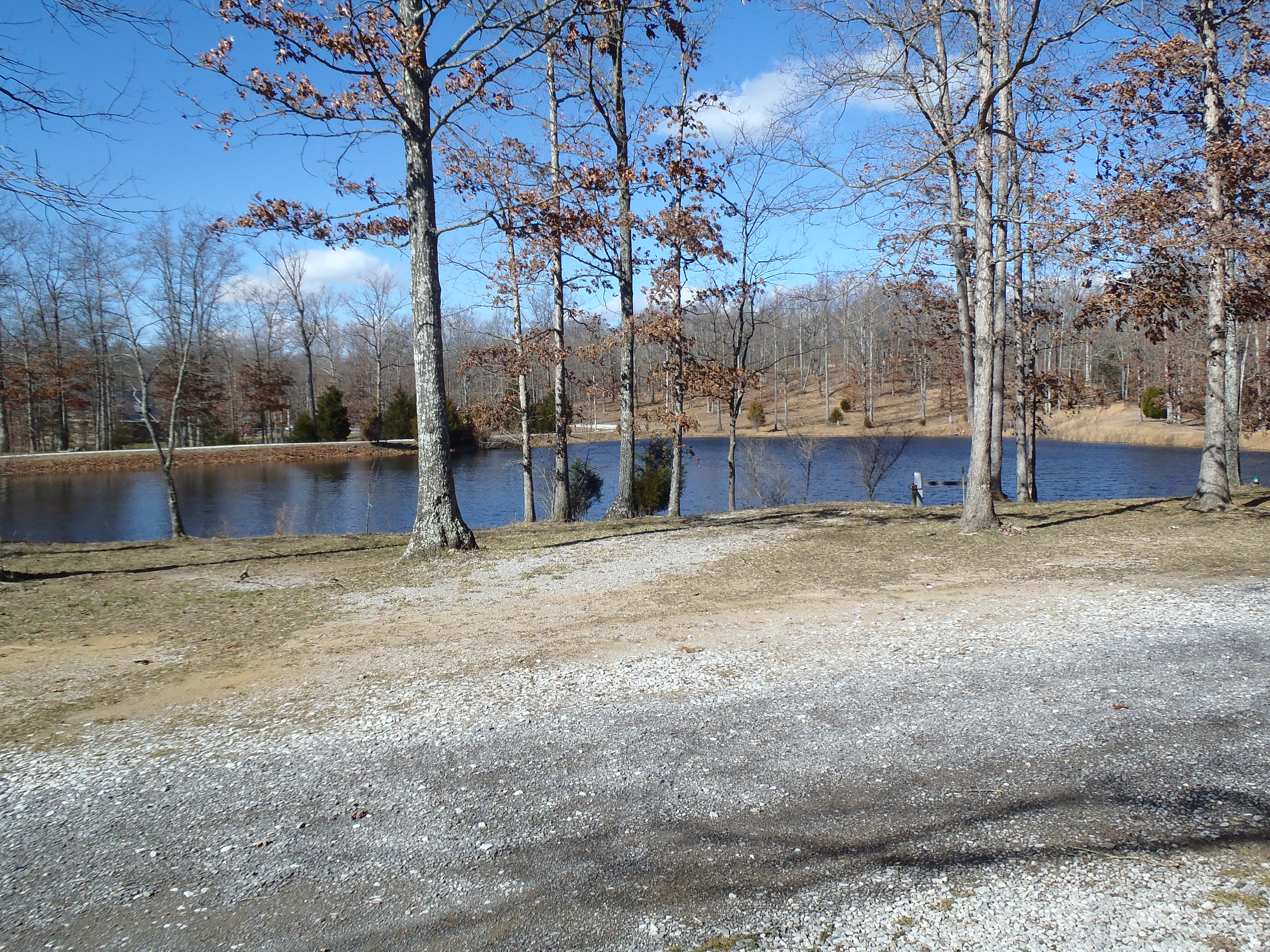 Pond on a sunny day